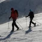 randonnée en raquettes à neige dans les Vosges