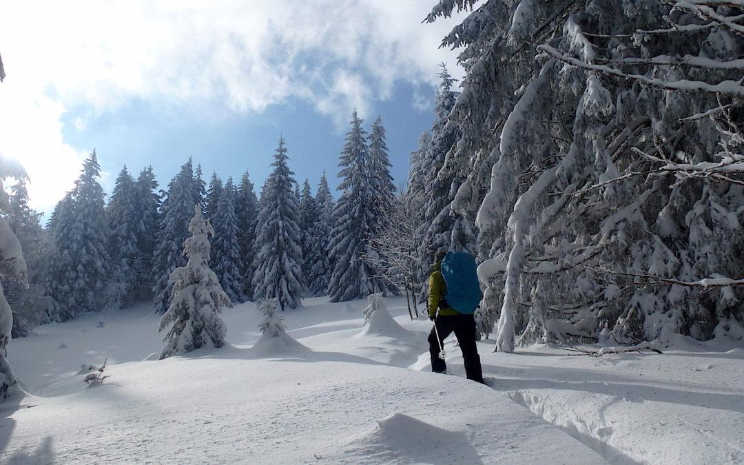 Randonnée nouvel an Vosges